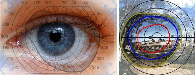 Туннельное зрение: причины, симптомы и методы лечения патологии