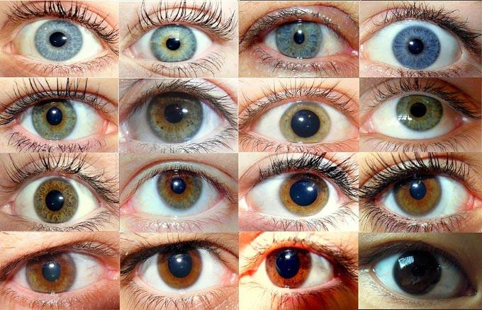 оттенки глаз человека