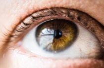 Формы первичной и вторичной ретинопатии